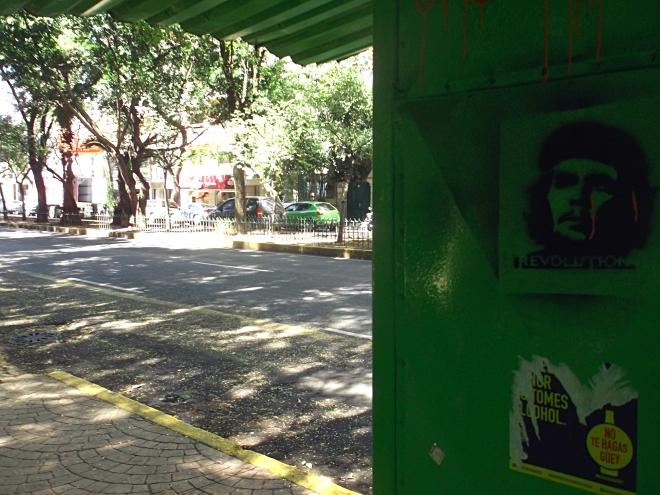Che Guevara Parque Mexico